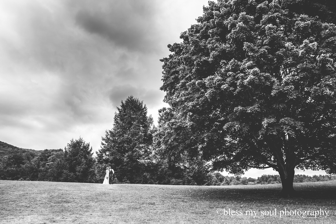 Lake Eden Wedding Photographer, Asheville Wedding Photographer, NC Wedding Photographery, Mountain Destination Wedding Photographer