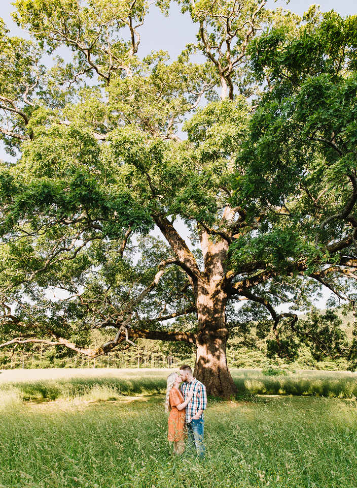 ARIANA & NOAH ENGAGED 2019-BLUERIDGELOVESTORIES (45 of 144)
